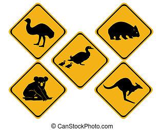 australiano, fauna, señales carretera