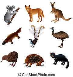 australiano, vector, animales, conjunto