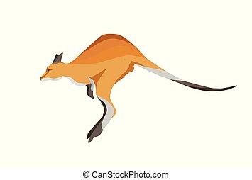 australiano, vetorial, animal