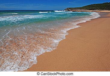 australie, scène plage, sydney