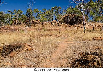 Australien, Buschwandern, Undara Volcanic National Park -...