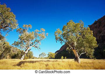 australier outback, landschaftsbild