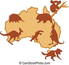 australis, 動物