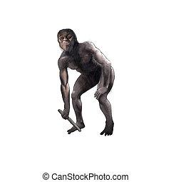 digital illustration of a australopithecus