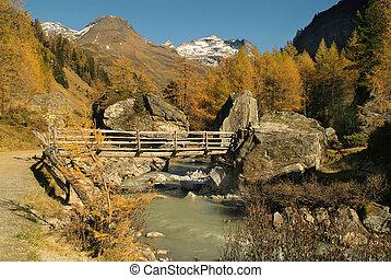 Austria, creek and bridge in Glschloess valley, East Tyrol