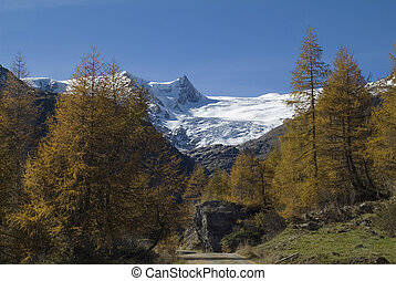 Austria, end of the Gschloess Valley in the alps with Schwarze Wand and Schlatenkees glacier