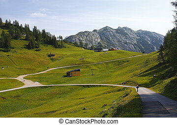 Austria green valley - Austria large panorama of the green...