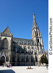 austria, linz, st. mary's cathedral