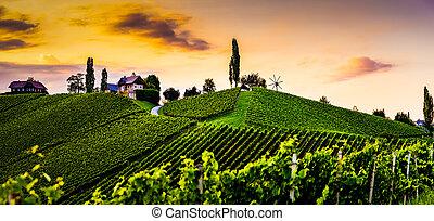 Austria, south styria travel destination. Tourist spot for vine lovers