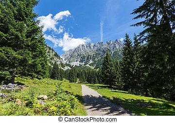 Austrian Alps. Path through summer mountain landscape, Kaiser mountains, Austria, Tyrol