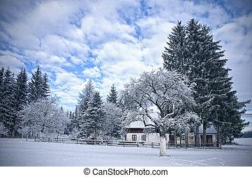 Austrian Farmhouse in Winter