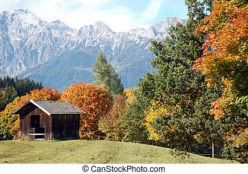 Shed on austrian mountain pasture in autumn