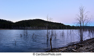 ausztrália, advancetown, arany, tó, lesiklik, queensland