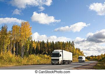 autóút, ősz