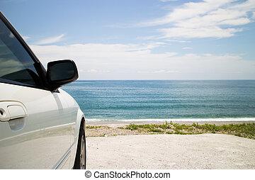 autó út, tengerpart, liget, út