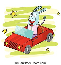 autó, üregi nyúl, vezetés