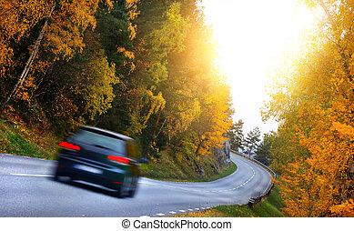 autó, az úton, alatt, a, fores