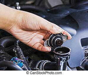 autó, care., ellenőriz radiátor