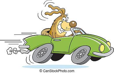 autó, karikatúra, vezetés, kutya