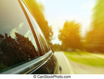 autó, kocsikázás gyorsan, át, erdő, út, -, gyorsaság, fogalom