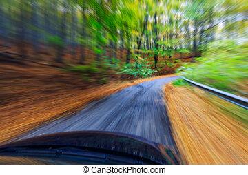 autó, kocsikázás gyorsan, bele, erdő