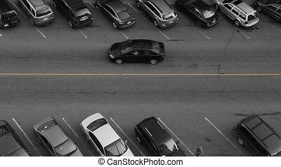 autó, spot., megállapít, várakozás