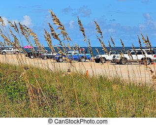 autók, tengerpart, parkolt
