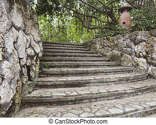 Authentic staircase in the jungle. Steps leading to a tropical park. Masonry stone. Old jug among the trees. Close-up.