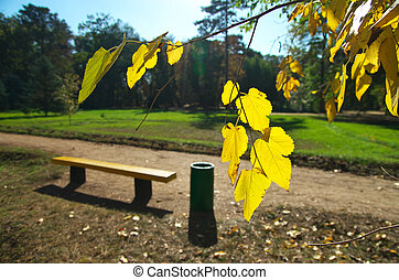 Bench in park.