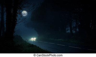 auto, antriebe, in, unheimlicher , nacht, wälder