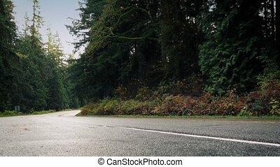 auto, antriebe, vergangenheit, auf, straße, durch, wälder