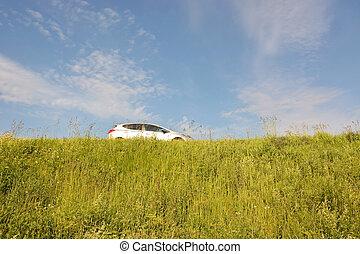 auto di dimensioni compatte, berlina compatta, autostrada