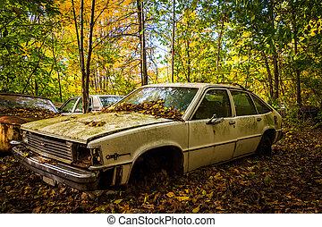 auto, farbe, altes , junkyard., herbst