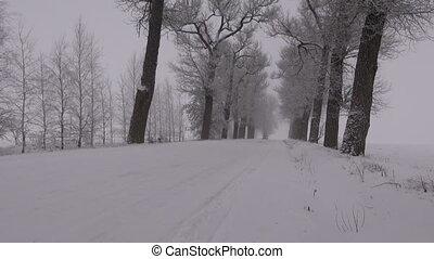 auto, geleider, op, besneeuwd, oud, landelijke straat