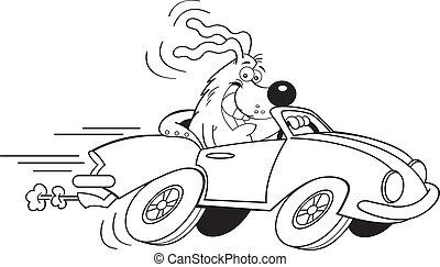 auto, karikatur, fahren, hund