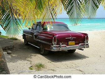 auto, kuba, sandstrand, handflächen, klassisch