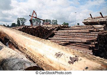 ∥, auto-loader, 仕事, 中に, a, 倉庫, の, 木材を伐採する