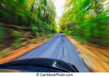 auto, treiben schnell, wald