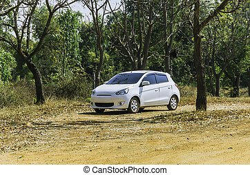 auto, weißes, straßenrand