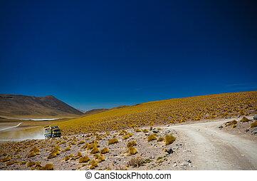 autobús, desierto, turista,  Atacama