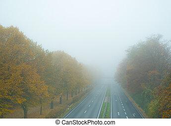 autobahn, automne, brouillard