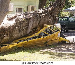 autobus, école, arbre, écrasé