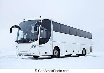 autobus, blanc, hiver