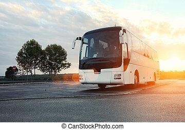 autobus, garé, route