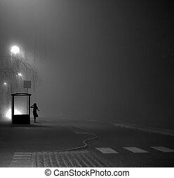 autobus, girl, arrêt, nuit