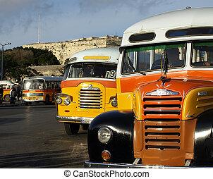 autobus, malta
