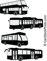 autobuses, colección
