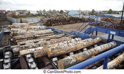 Automated log sorting line. Wheel loader and automatic ...