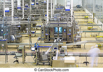 automated production line in modern dairy factory