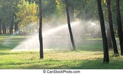 Automatic sprinkler system watering the lawn.